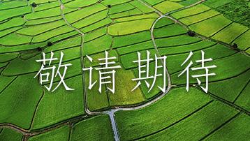 【江西】赣州市大余县元龙畲族村直播时间:11月13日