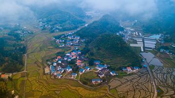 【贵州遵义花茂】在最美红村,寻找你的美丽乡愁直播时间:10月25日