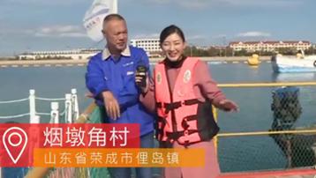 【山东烟墩角村】看天鹅渔村 游海洋牧场直播时间:11月4日
