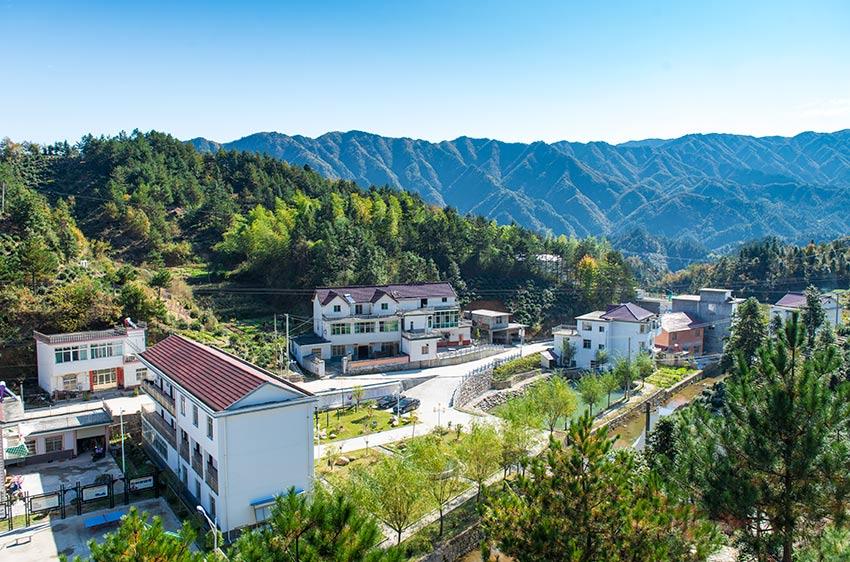该村植被完美,森林覆盖率达98%,负氧离子含量高,生态环境优良!